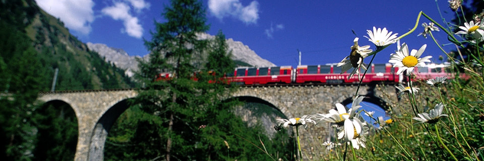 bernina express da Domaso